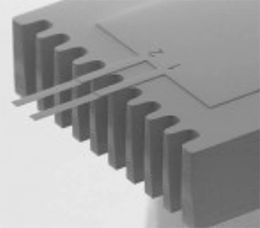 两微悬臂芯片